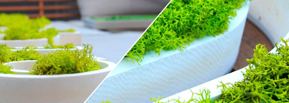 Estudiar arquitectura vegetal en granada for Jardines verticales introduccion